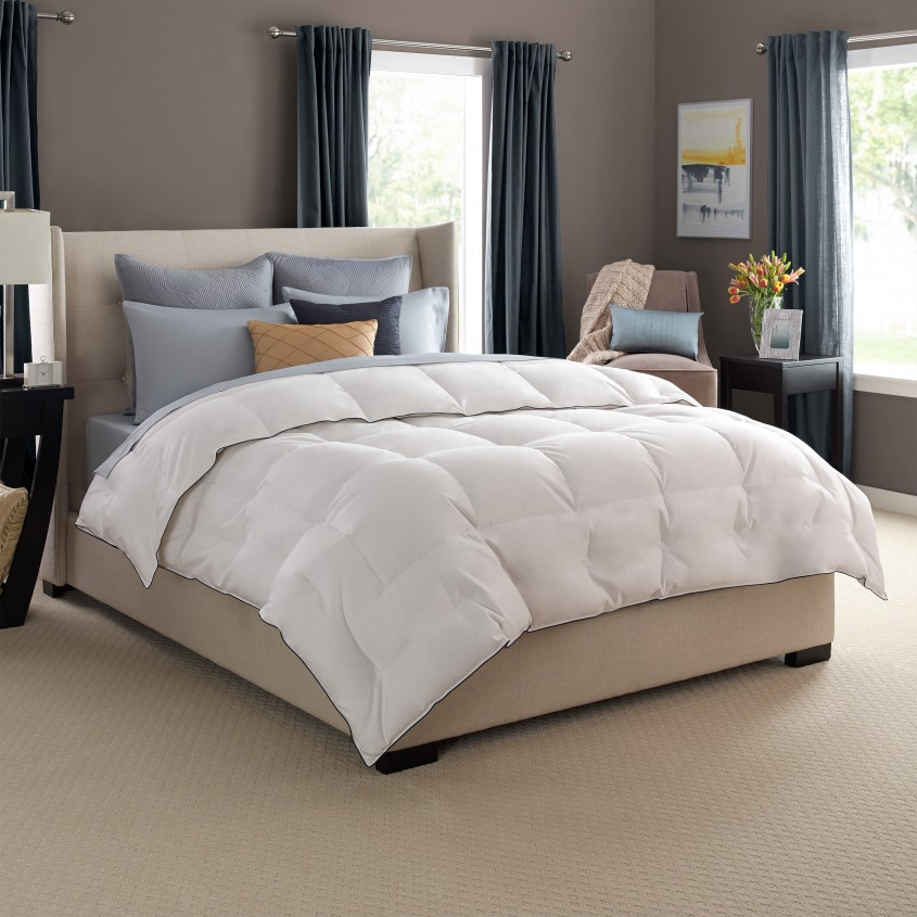 Amusing Pacific Coast Down Comforter For Bedroom Design With Pacific Coast Classic Down Comforter