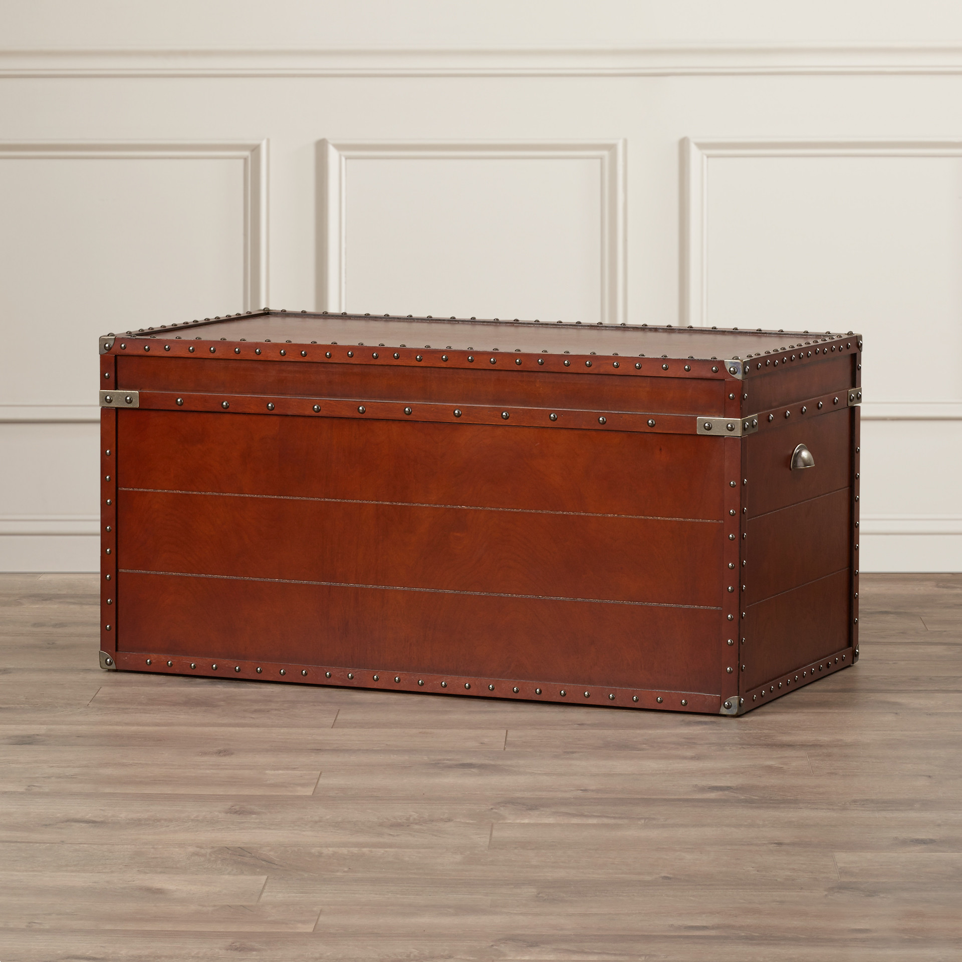 Mesmerizing trunk coffee table for classic home furniture with storage trunk coffee table
