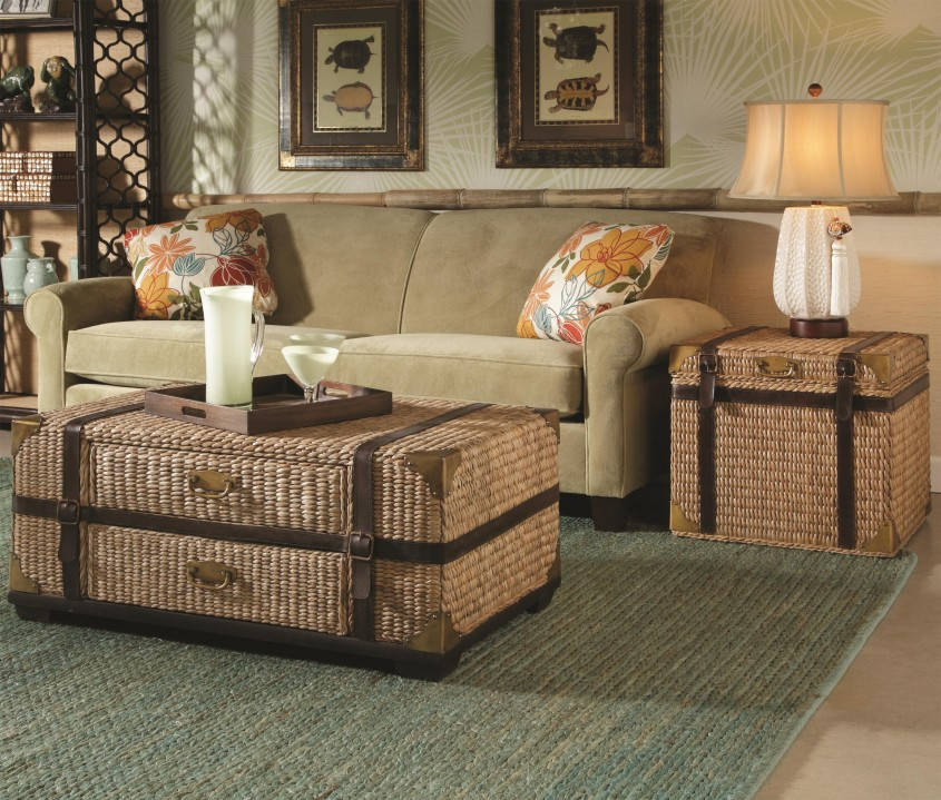 Stunning Trunk Coffee Table With Sofa And Rugs For Classic Home Furniture With Storage Trunk Coffee Table